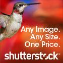 link-shutter