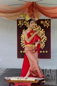 Auckland International Cultural Festival 2014