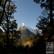 Mountains in Fiordland National Park