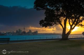 Auckland City from Davenport New Zealand