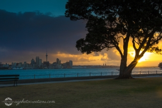 Auckland City from Davenport New Zealand
