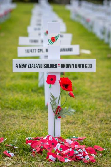 Anzac display Auckland Domain