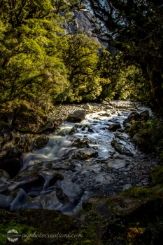 River in Fiordland National Park New Zealand