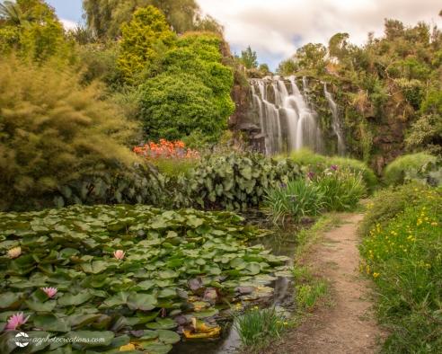 wrightswater-gardens05