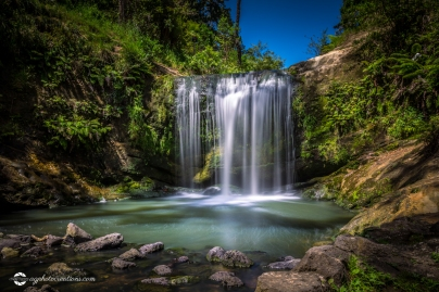 Long Exposure of Oakley Creek Waterfall on a bright Summers Day, Auckland, New Zealand