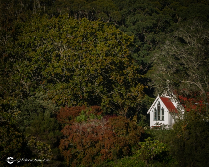 The Historic Saint James Church in Kerikeri New Zealand Surrounded by Trees in Autumn